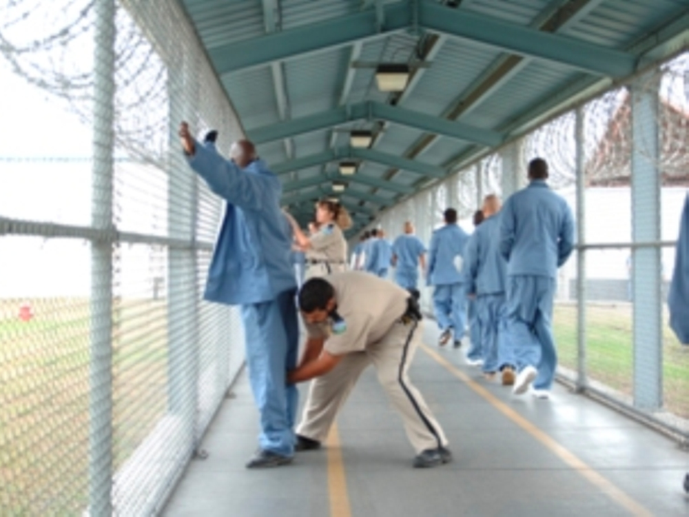 solutions to prison gangs This lesson will discuss the history of prison gangs the lesson will also identify the different types of prison gangs and the statistics of gangs.